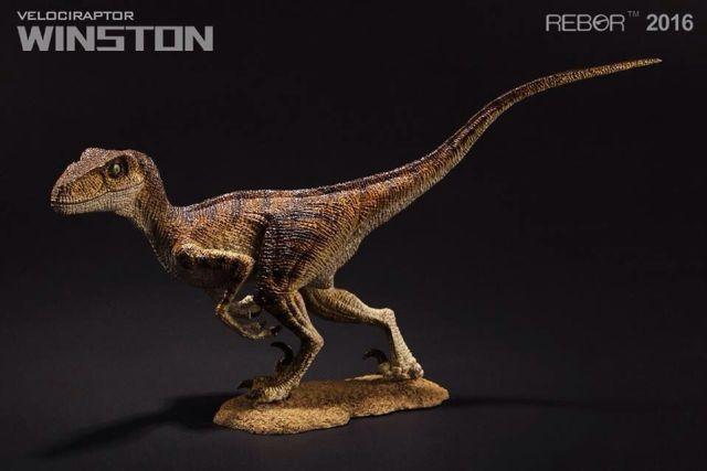 01 Raptor Rebor 2016 'Winston'