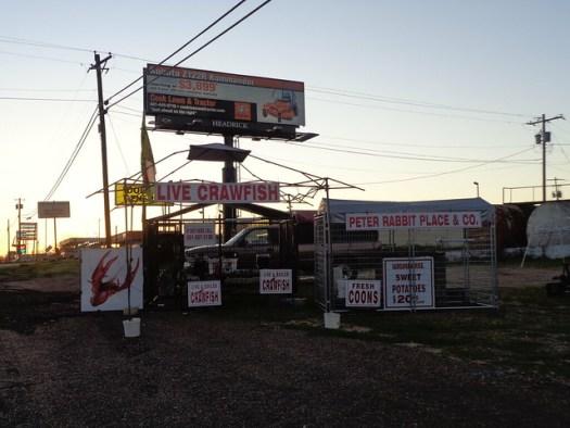 Peter Rabbit Place & Co, Natchez MS
