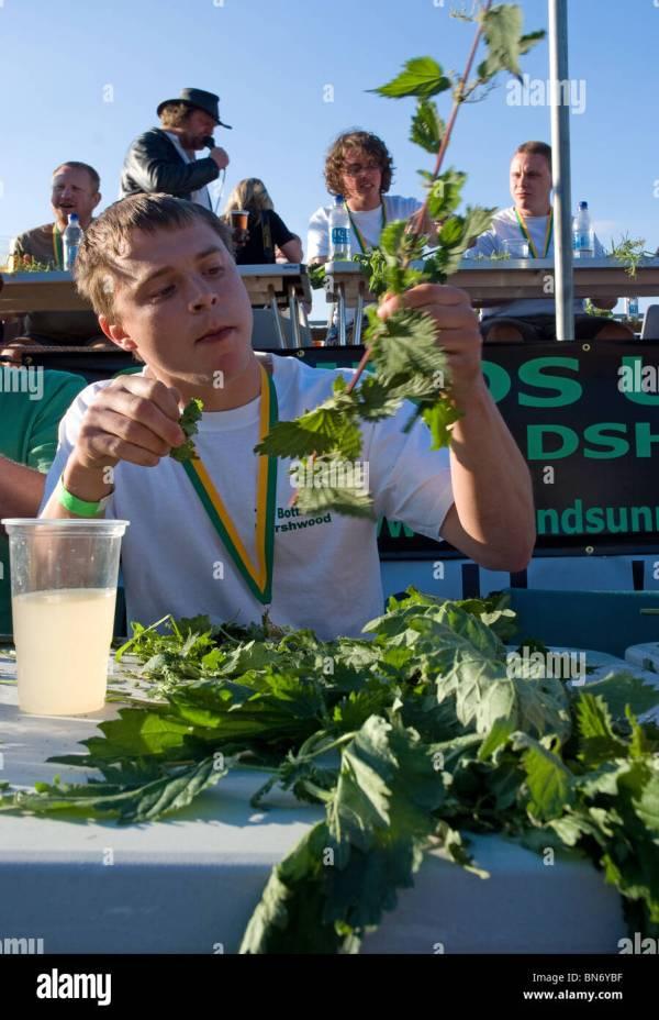 2010 world nettle eating champion Sam Cunningham tucked ...