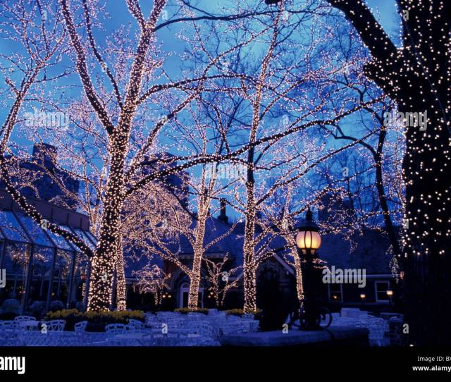 Central Park Holiday Lighting