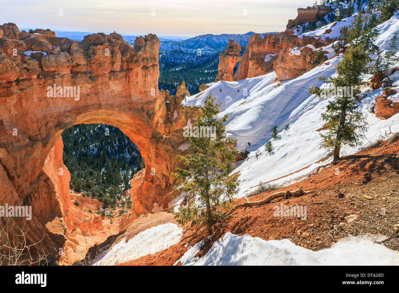 Winter In Bryce Canyon National Park Utah USA Stock