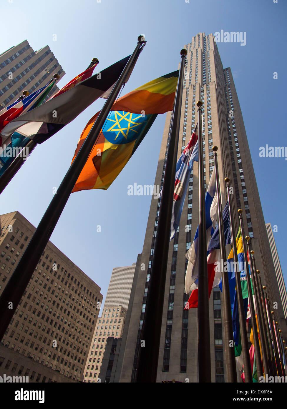 Above Ground Garden New York City