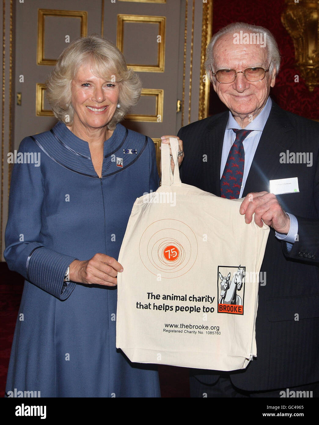 Duchess of Cornwall hosts Brooke conference Stock Photo