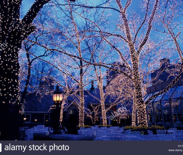 At Night Chains Of Lights Central Park Christmas Lights Nacht New York Outside Tavern On The Green Trees U