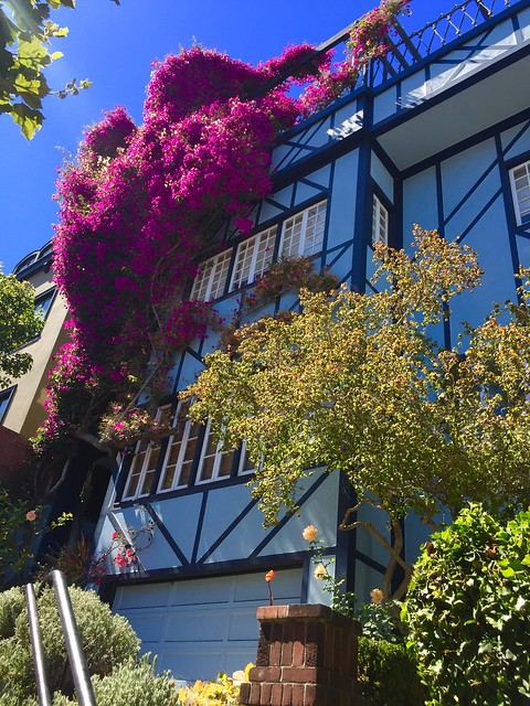 Lombard Street San Francisco, details of house with flowers