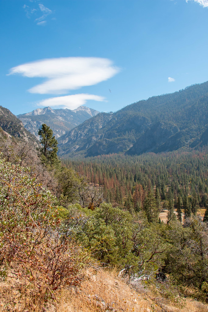 10.16. Kings Canyon National Park