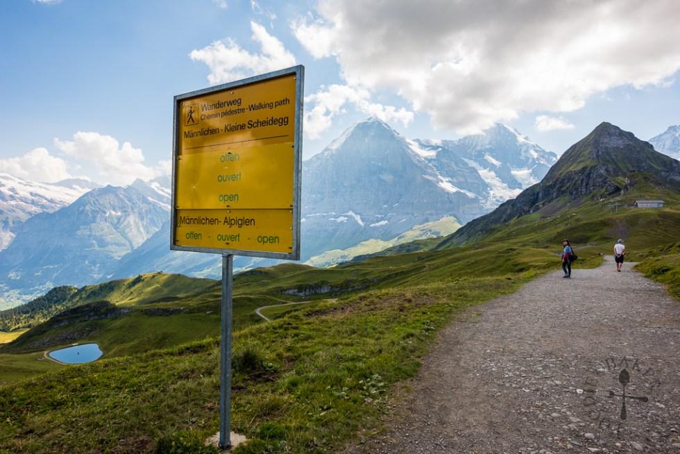 Panorama Trail: Männlichen – Kleine Scheidegg