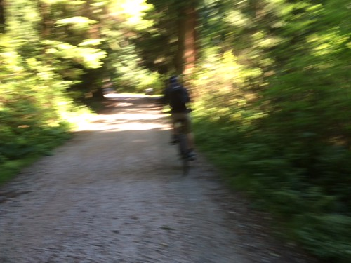 Things to do in Vancouver: Cycling in Stanley Park