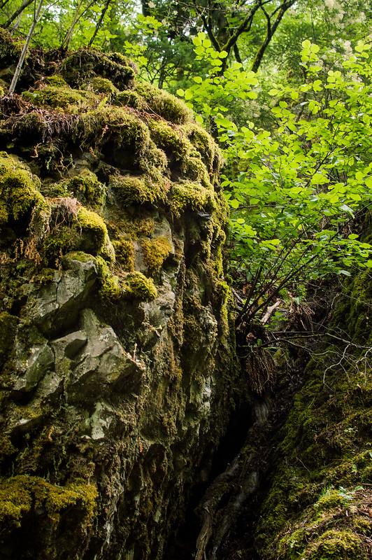 Multnomah Falls Hike Oregon