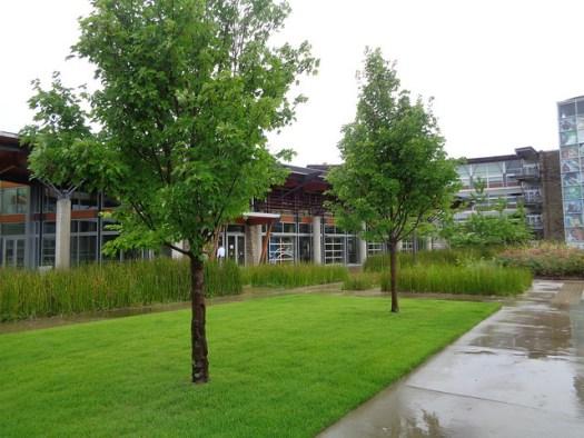 Heifer International Village, Little Rock AR