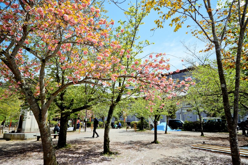 2015 April Kansai 255