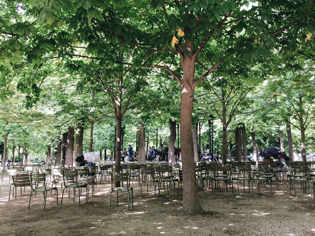 luxembourg gardens rain paris