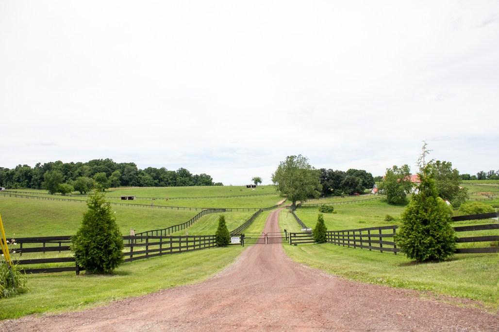 unionville-horse-farm-dirt-road
