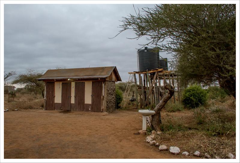 Amboseli-80