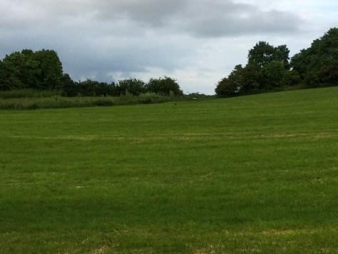 Farm 3.14
