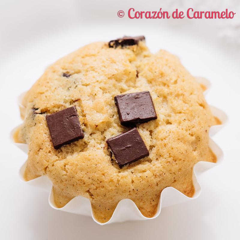 Magdalenas de vainilla y chocolate