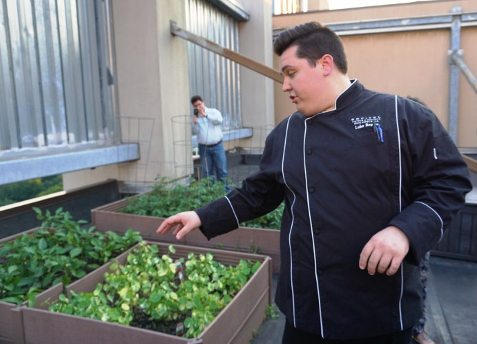 Chef Luke Rogers at Sofitel Philadelphia Points Out Various Herbs at the Hotel's Rooftop Garden, June 2016.