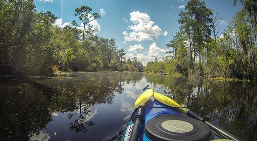 Lowcountry Unfiltered at Okefenokee-115