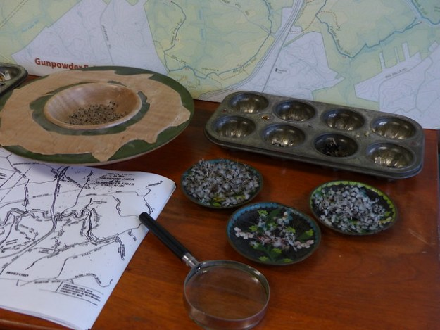 Flies, Muffin Tins and Maps