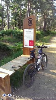 Start of the RED Mountain Bike Trail, Swinley Forest, Bracknell