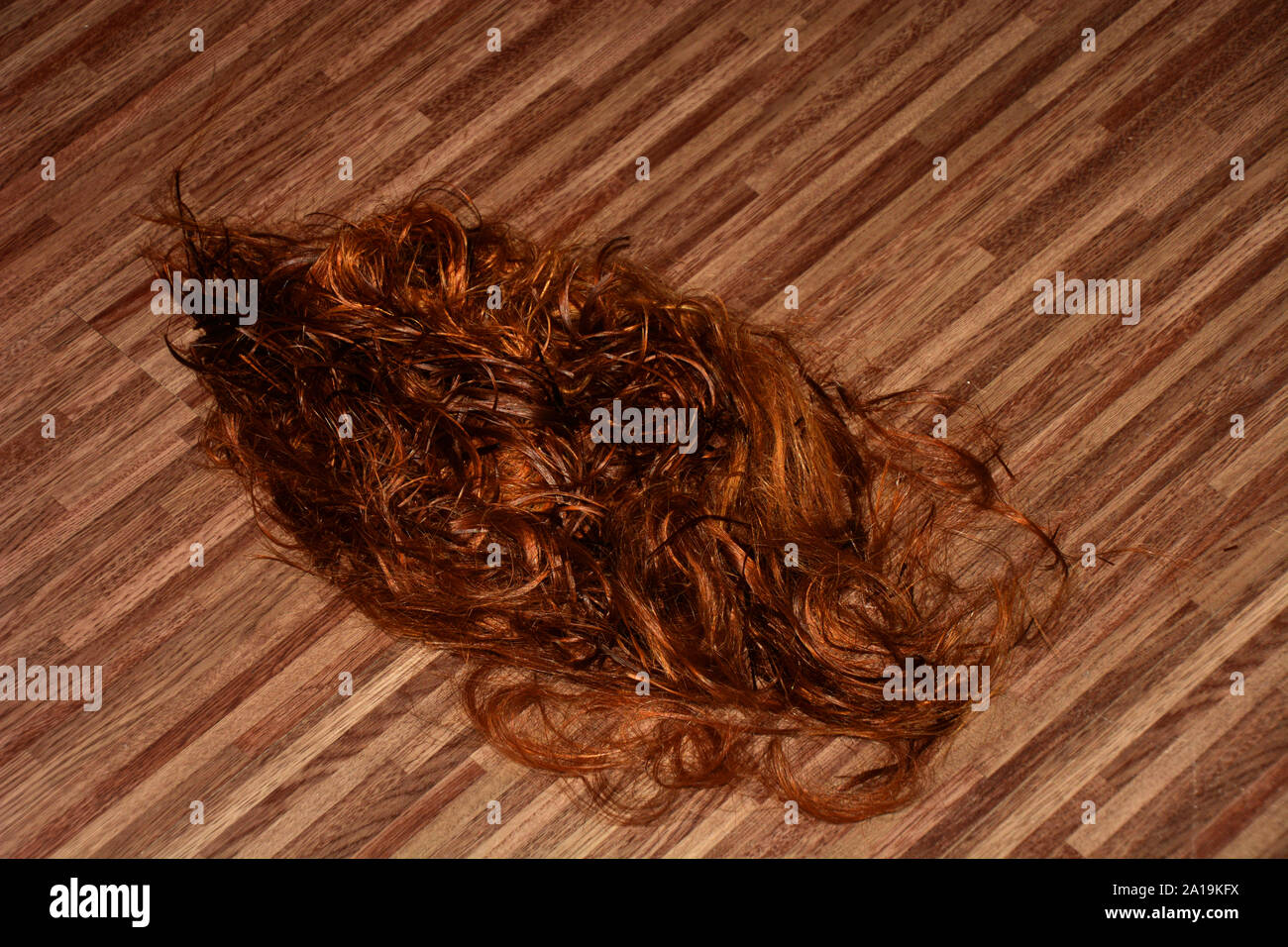 https www alamy com cut long red hair on the floor in a hairdressing salon red cutted hair in a beauty salon image327824558 html