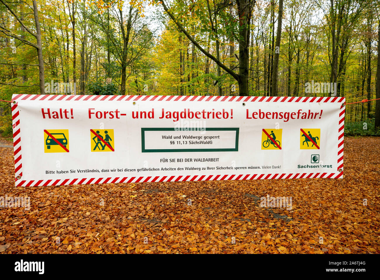 Use them in commercial designs under lifetime,. Forest Law High Resolution Stock Photography And Images Alamy