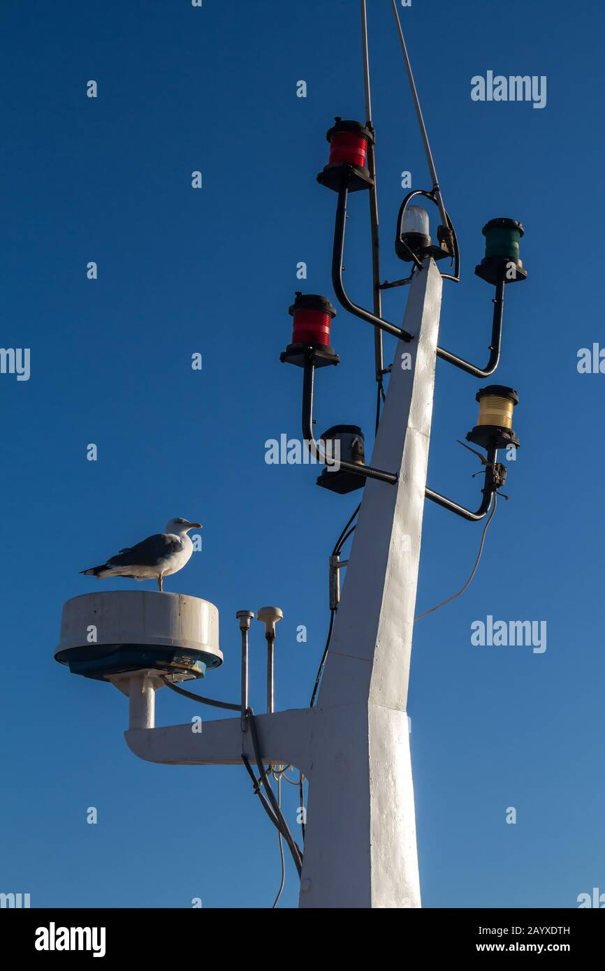 https www alamy com detail of the mainmast with various colorful lights for signalization seagull standing bright clear blue sky essaouira morocco image344174337 html