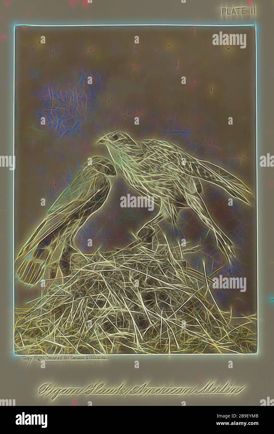 Art Merlin High Resolution Stock Photography And Images Alamy
