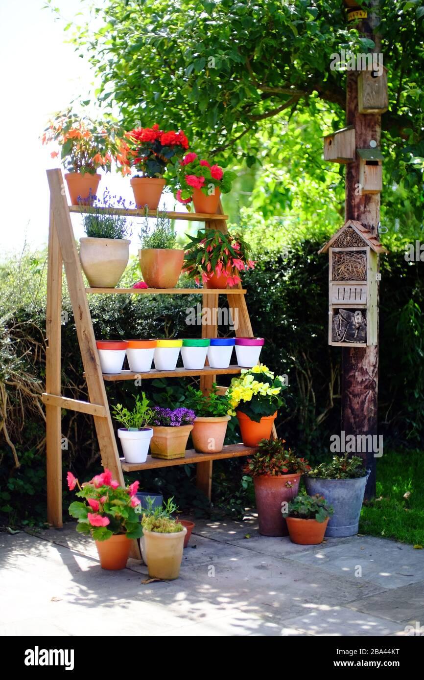 https www alamy com vertical herb garden on a patio image350445420 html