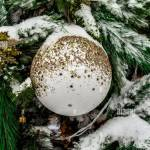 Snow Covered Decorated Christmas Tree Stands On A City Street Close Up Stock Photo Alamy