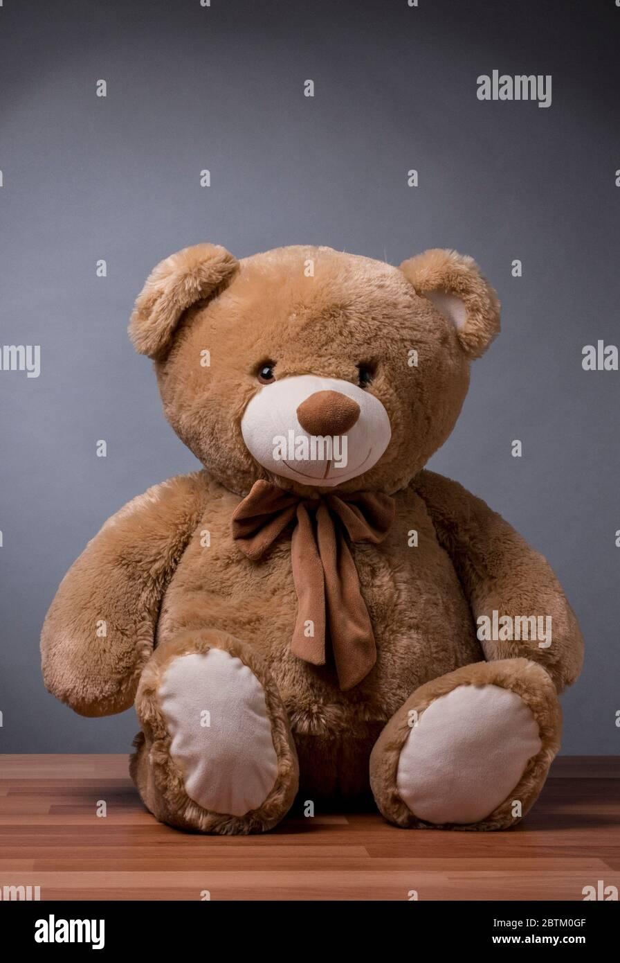 https www alamy com teddy bear with studio overhead lighting image359398607 html