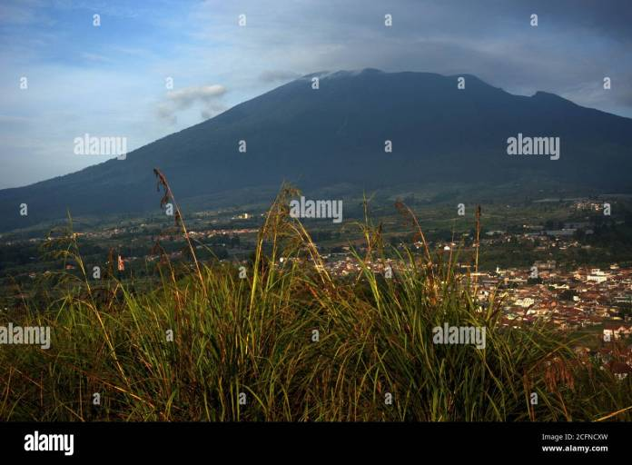 Gede Pangrango National Park High Resolution Stock Photography And Images Alamy