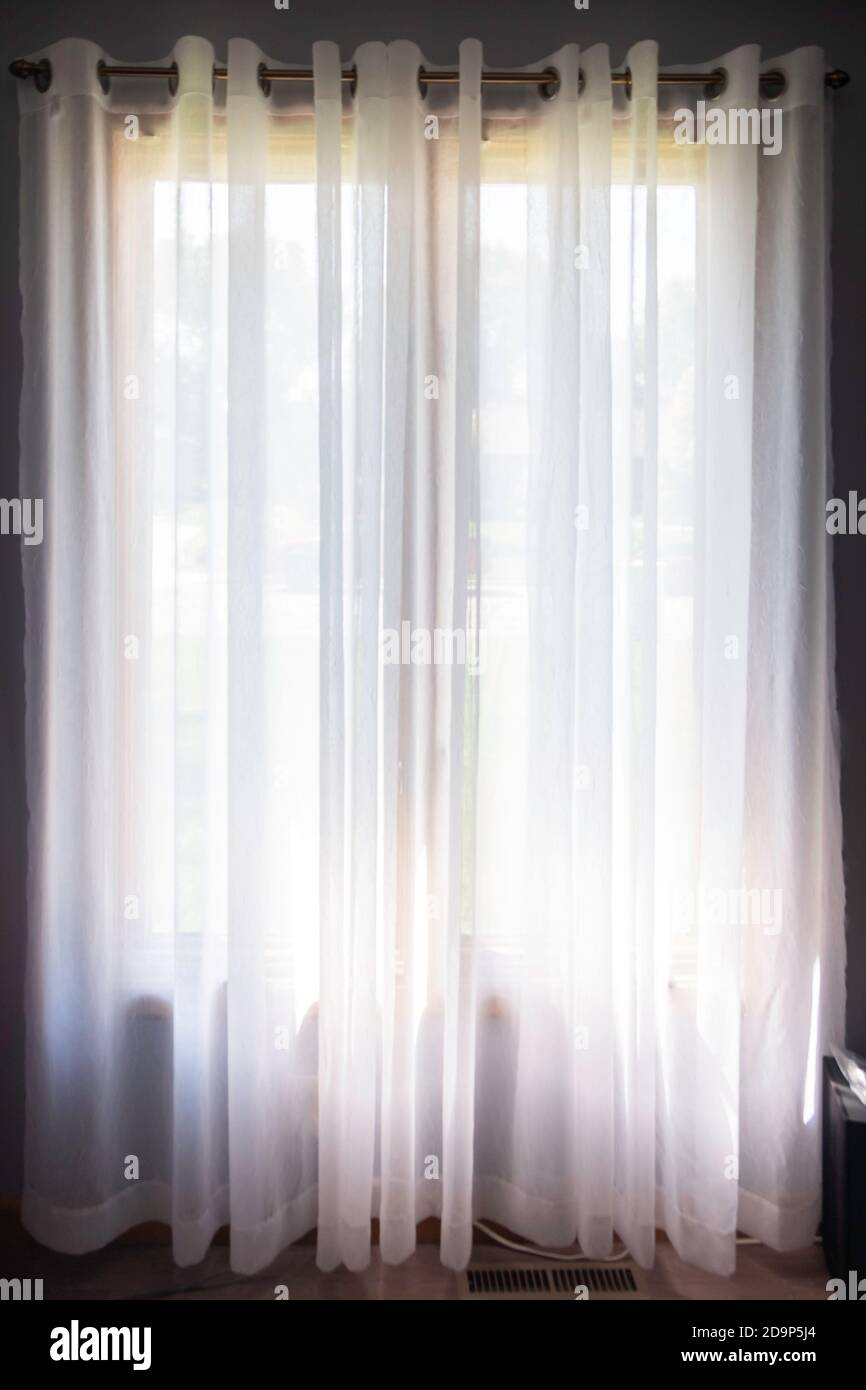 https www alamy com white semi sheer curtains hanging from a decorative curtain rod on tall double windows image384647372 html