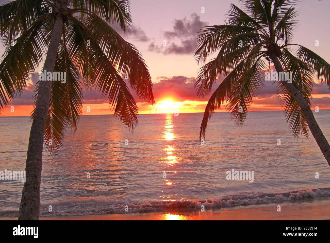 https www alamy com plages de martinique coucher de soleil image397982596 html