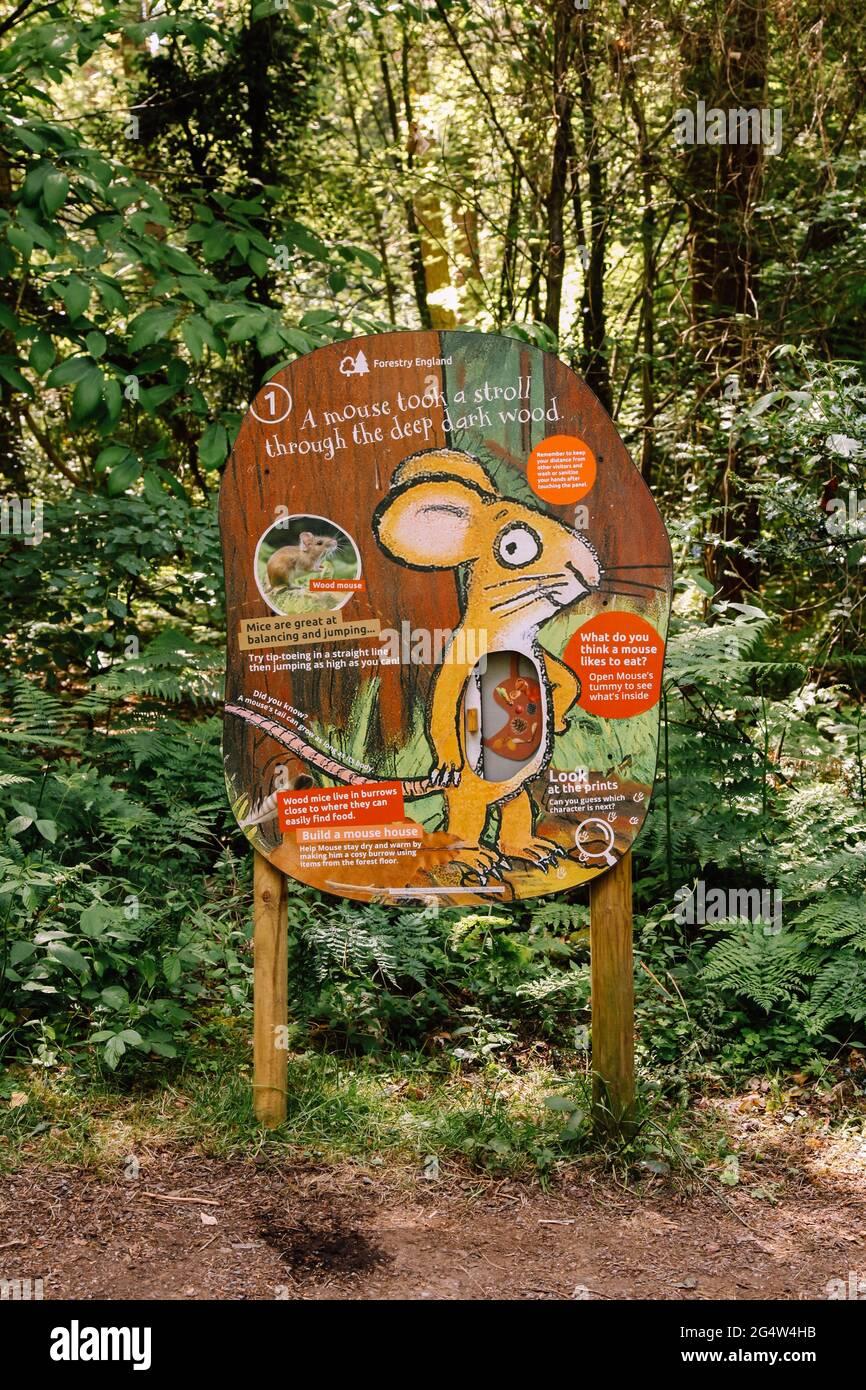 Stay nearby with forest holidays. Gruffalo Trail Alice Holt Forest Farnham Surrey England United Kingdom Stock Photo Alamy