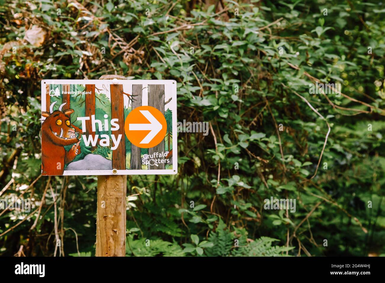 Children will love this navigational challenge which uses a simple map to find 12 gruffalo markers hidden in the wood. Gruffalo This Way Sign On The Gruffalo Trail Alice Holt Forest Alton Surrey Uk Summer June 2021 Stock Photo Alamy