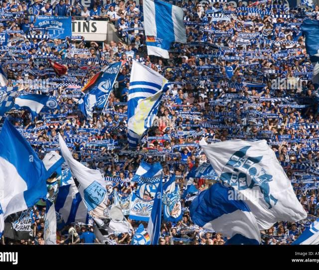 Fans Of The German Soccer Club Fc Schalke 04