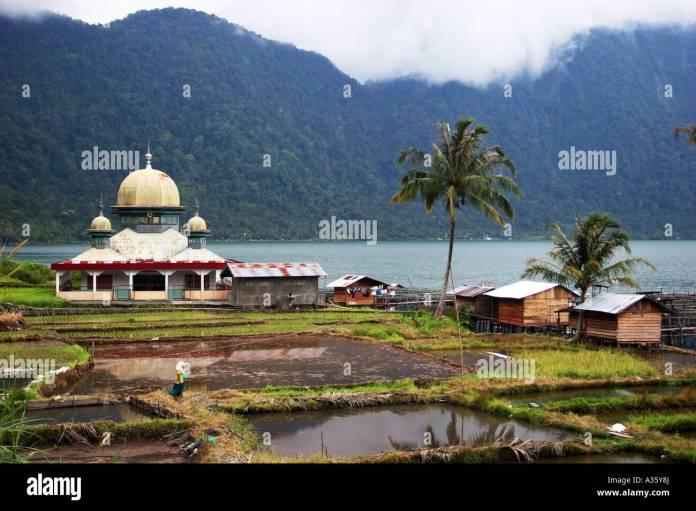 Rice Fields And A Temple At Lake Maninjau Sumatra Indonesia Stock Photo Alamy