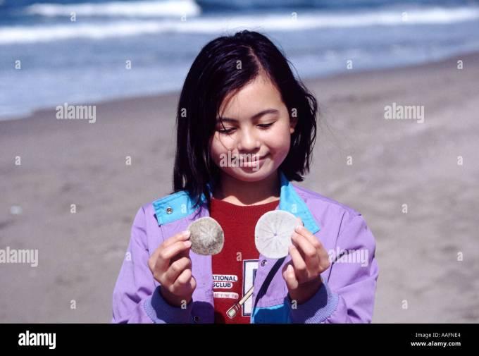 15914 ten year old girl holds sand dollars ocean beach