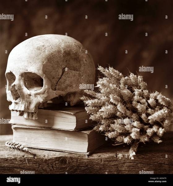 poetry litterature life death phylosophy skull thinking hamlet Stock     poetry litterature life death phylosophy skull thinking hamlet shakespear  human