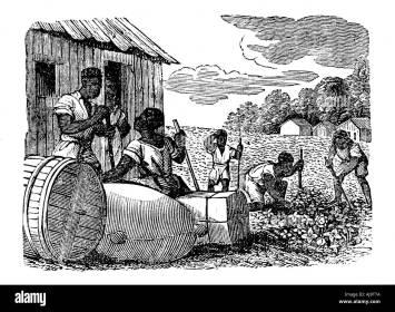 Slaves working on a tobacco plantation, 1833. Artist: Anon Stock Photo - Alamy