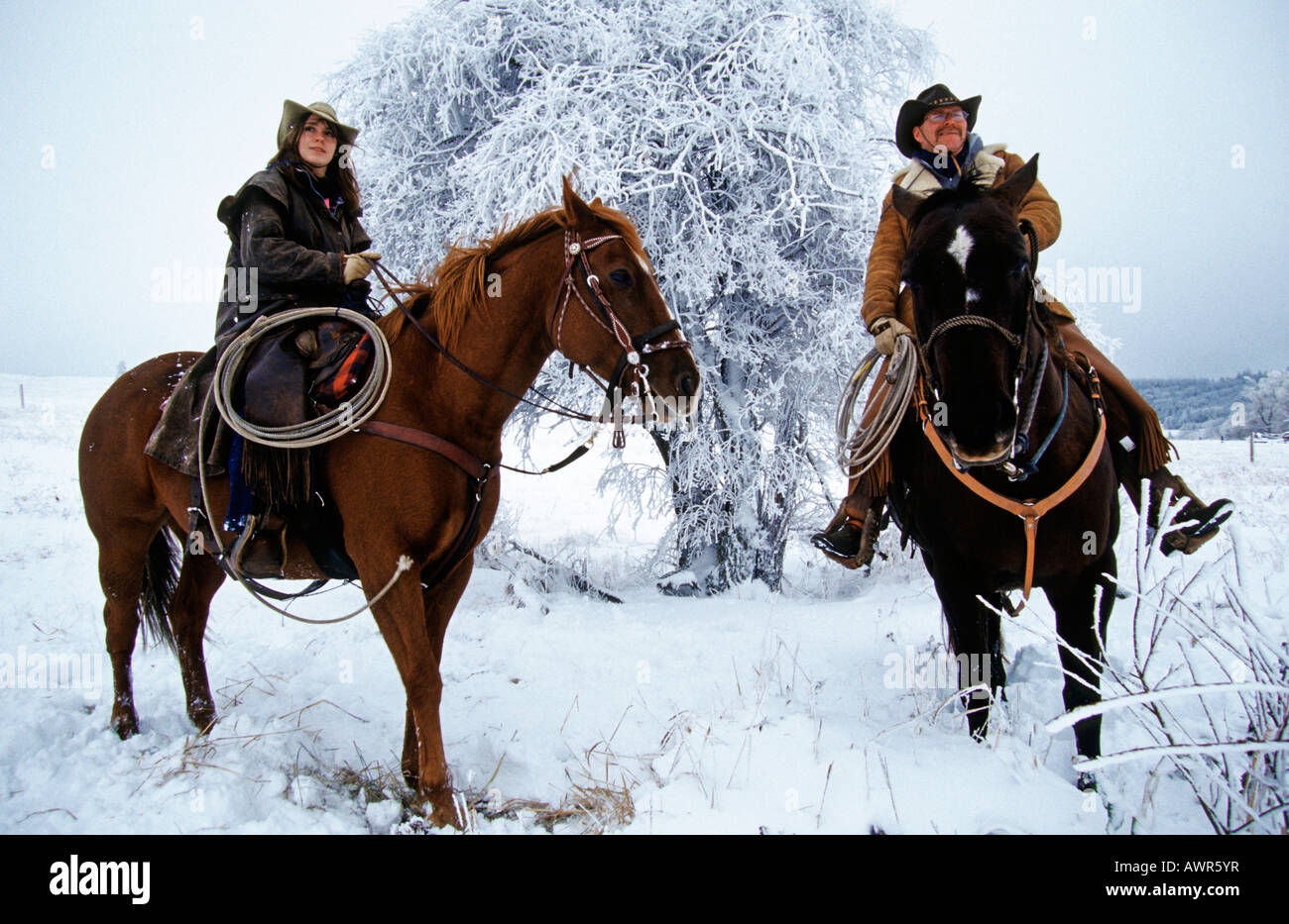Cowboy And Cowgirl Surveying From Horses Canada Stock