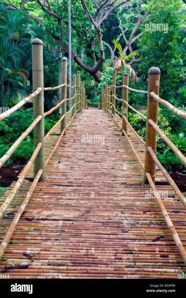 bamboo garden bridge Bamboo bridge in National Tropical Botanical Garden Kauai