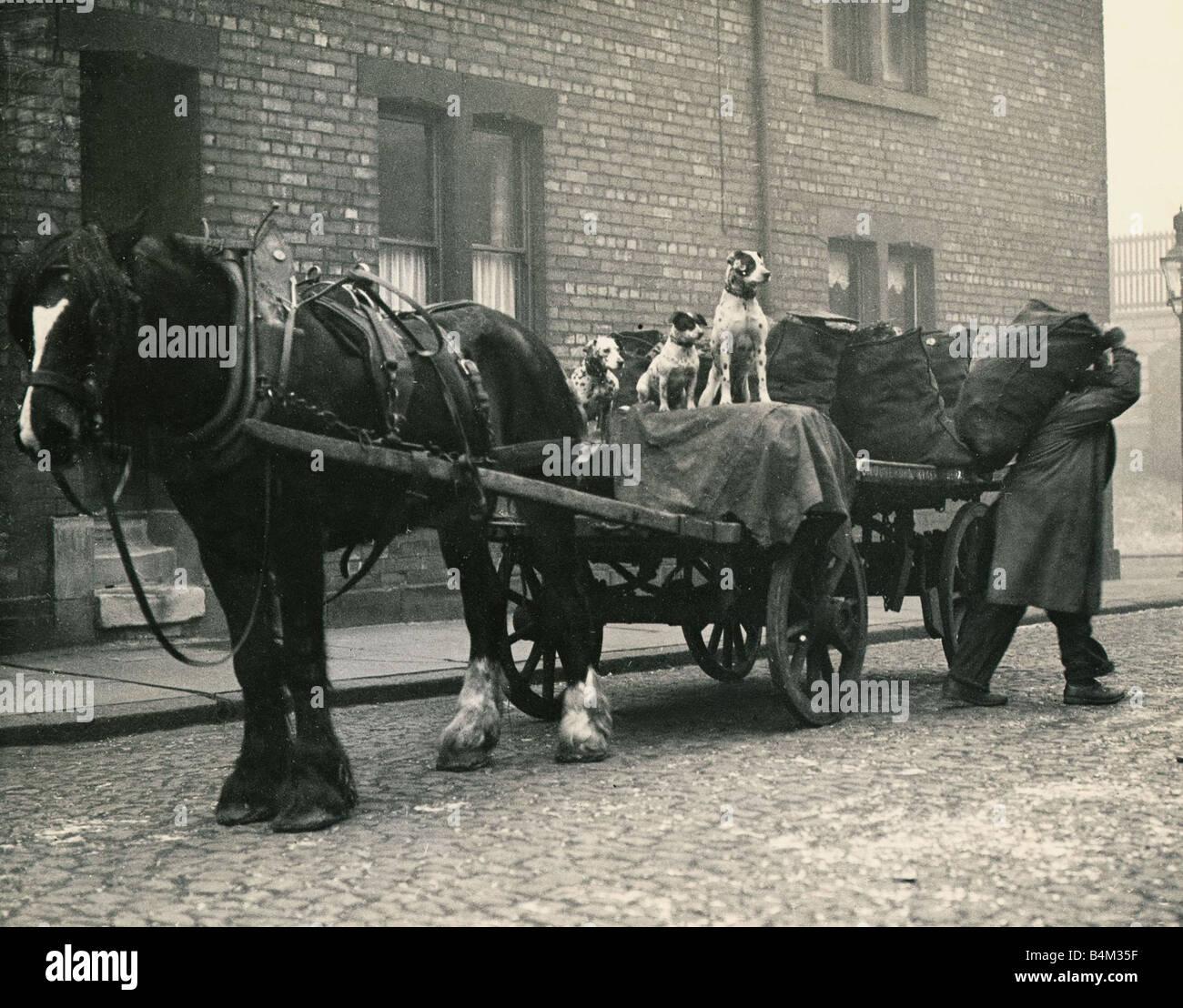 Industrial Carts Columbia
