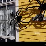 Big Furry Spiders On The Outside Of A House As Halloween Decoration Stock Photo Alamy