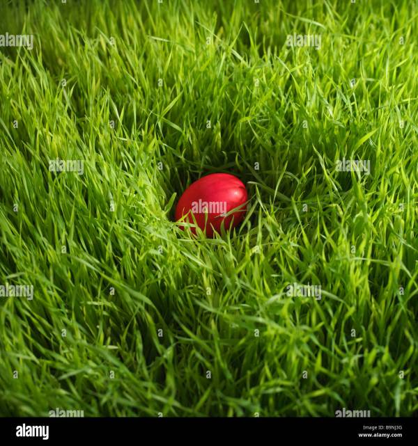 red Easter egg hidden in grass Stock Photo: 23217476 - Alamy