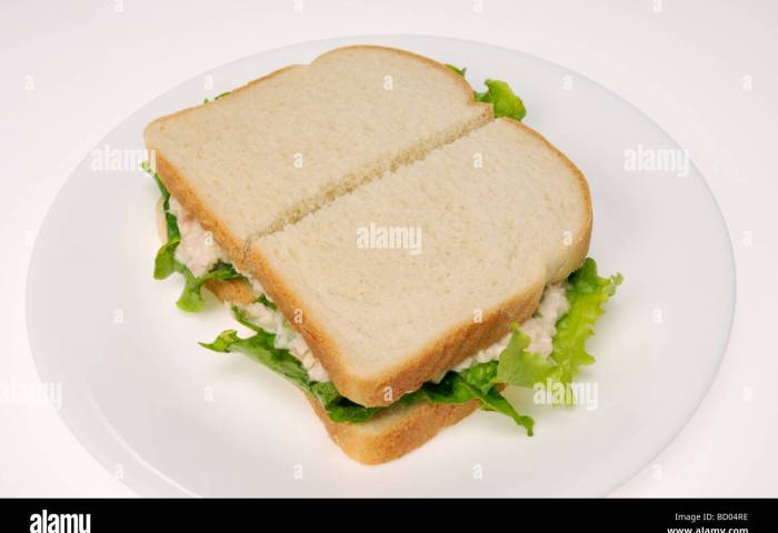 Tuna Mayo Sandwich With Lettuce On White Bread On A White Plate On