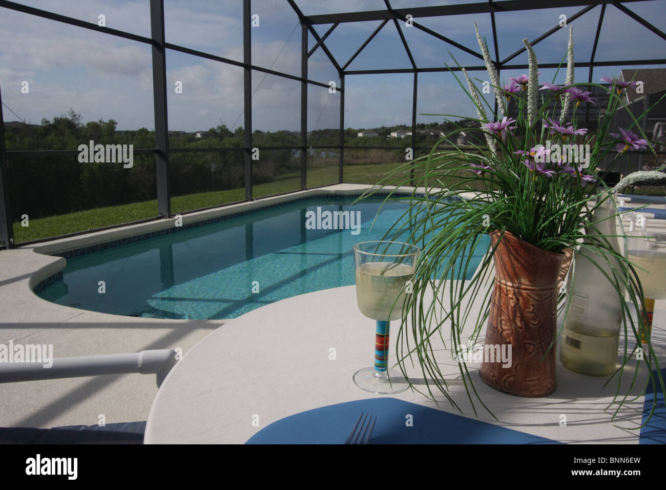 https www alamy com stock photo private swimming pool and patio area with insect mesh cover taken 30584257 html