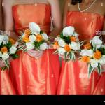 Bridesmaids Holding Wedding Bouquets Of Orange And White Roses And Stock Photo Alamy