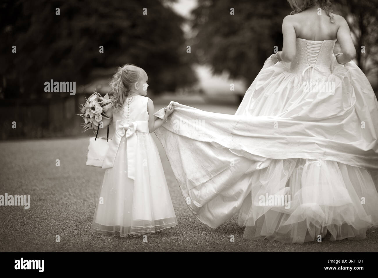 Bridesmaid Or Flower Girl Holding The Train Of A Brides